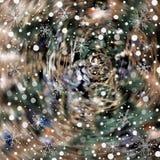Semestra suddig bakgrund med snö och olika snöflingor Fotografering för Bildbyråer