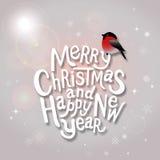 Semestrar den typografiska etiketten för jul för Xmas och nytt år desig Royaltyfri Bild