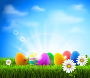 semestrar härliga easter för bakgrund ägg fläck Arkivfoton