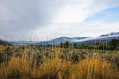 Semi-Arid Grassy and Sagebrush Highland Landscape Royalty Free Stock Photo