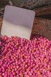 Semi asciutti dei piselli casalinghi per la piantatura nel giardino fotografia stock