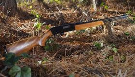 Semi auto rifle Stock Images