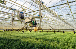 Semi-automatic spraying robot in a greenhouse specialized in the. Semi-automatic spraying robot in a Dutch greenhouse specialized in the cultivation of Royalty Free Stock Photo