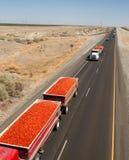 Semi-camion di Roma Tomato Truckloads Travel Via da commercializzare Immagini Stock