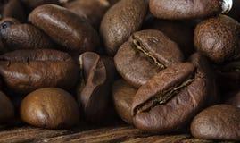 Semi del caffè sul fondo di legno di lerciume Fotografia Stock