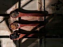 Semi del fieno greco, del pepe e di cumino Immagine Stock