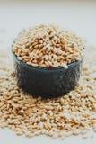 Semi del grano dell'orzo perlato Immagine Stock