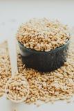 Semi del grano dell'orzo perlato Fotografia Stock Libera da Diritti