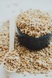 Semi del grano dell'orzo perlato Immagini Stock