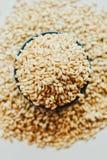 Semi del grano dell'orzo perlato Fotografie Stock