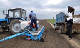 Semi della semina con i semi ed i fertilizzanti Immagini Stock Libere da Diritti