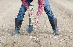 Semi della semina su suolo Immagini Stock
