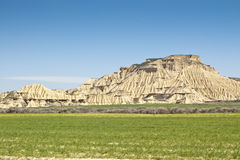 Semi-desert ландшафт Стоковые Фото