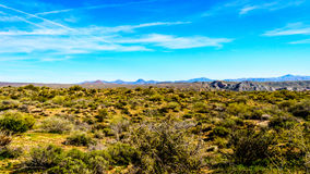 Semi desert landscape and distant mountains under blue sky in Tonto National Forest Stock Photos