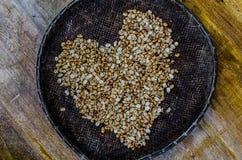 Semi di cacao torrefatti in vecchio canestro immagine stock libera da diritti