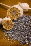 Semi di papavero sulla tavola di legno Immagini Stock Libere da Diritti