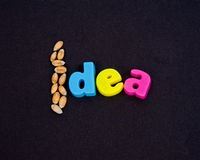 Semi di un'idea. Immagine Stock Libera da Diritti