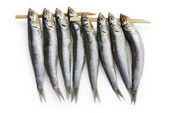 Semi dried anchovy , japanese food Stock Image