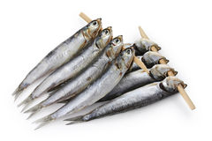 Semi dried anchovy , japanese food Stock Photography