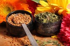 Semi e foglie di fieno greco asciutti immagine stock