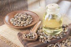 Semi ed olio di ricino sulla tavola di legno - ricinus communis immagini stock