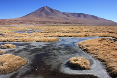 Semi frozen lakes in Eduardo Avaroa Reserve Royalty Free Stock Photography