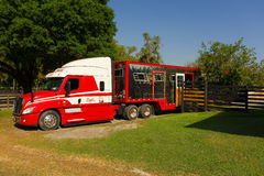 A semi hauling a huge horse trailer in ocala Royalty Free Stock Photos