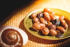 Semi matti dell'argania spinosa sul piatto - l'argania spinosa è un antiossidante usato per produrre l'olio per la pelle fotografie stock libere da diritti