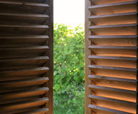 Semi-open dark wooden shutters. Semi-open dark wooden shutters close-up and view of the garden Royalty Free Stock Image