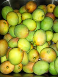 Semi-ripen mangos. Sink full of semi-ripen mangos picked from the countryside of Fogo, Cabo Verde Stock Images