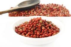 Semi rossi dei granelli di pepe Immagini Stock