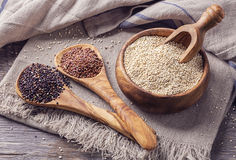 Semi rossi e in bianco e nero della quinoa Immagini Stock