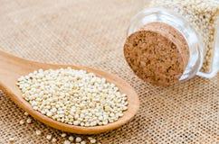Semi sani della quinoa Immagini Stock