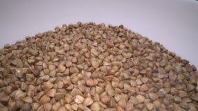 Semi secchi del grano saraceno Grano antico libero del glutine per la dieta sana, stile di vita di salute stock footage