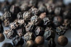 Semi secchi di piper nigrum del pepe nero Fotografia Stock Libera da Diritti
