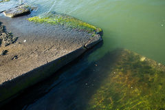 Semi-submerged concrete slabs at the edge of a Bay, with green algae visible. Stone and concrete slabs like these are intended to prevent erosion, but Royalty Free Stock Image