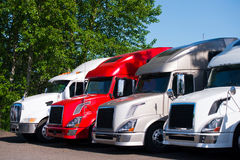 Semi trucks models in row on truck stop parking lot. Different models of powerful professional semi trucks for modal transport commercial goods, stand in a row Stock Images