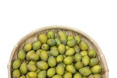 Semi verde oliva Immagini Stock Libere da Diritti