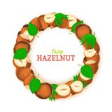 Semicircle frame composed of hazelnut nut. Vector card illustration. Nuts filbert frame, pecan fruit in the shell. Shelled, leaves for packaging design food Royalty Free Stock Photography