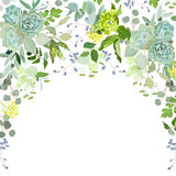 Semicircle garland herbal frame on white background vector illustration
