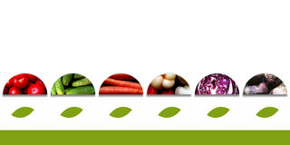 Semicircles with vegetables and with big leafs underneath Royalty Free Stock Images