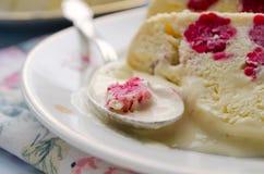 Semifreddo десерта мороженого поленики Стоковая Фотография RF