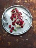 Semifreddo or italian cheese ice-cream dessert Stock Images