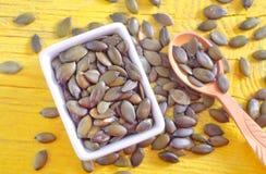 Semilla de calabaza Imagenes de archivo