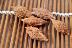 Semilla de la azufaifa roja Imagen de archivo libre de regalías