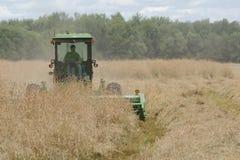 Semilla de la hierba del corte del tractor Foto de archivo libre de regalías