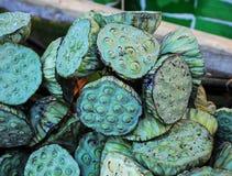 Semilla de Lotus Imagenes de archivo