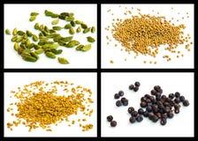 Semilla de mostaza amarilla, semilla del Griego del heno, cardamomo, enebro Imagenes de archivo
