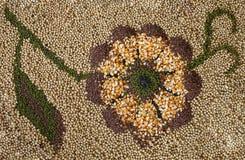 Semilla en forma de la flor Foto de archivo