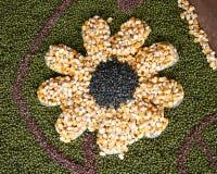 Semilla en forma de la flor Imagen de archivo libre de regalías